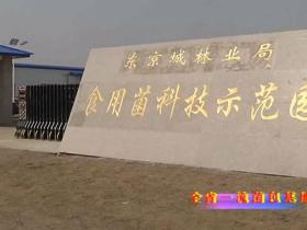 黑龙江东京城林业局
