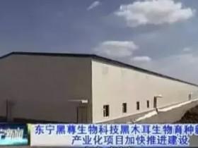 黑龙江东宁黑尊生物科技有限公司