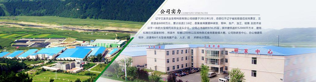 辽宁三友农业科技有限公司